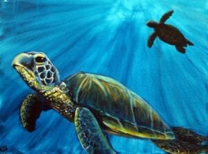 Turtles under the sea from uptown paint and sip perfect for girls night out ideas and a cute date night Jupiter FL