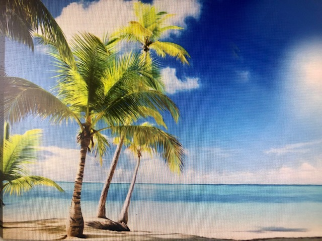 Sunny Day at the Beach from uptown paint and sip perfect for girls night out ideas and a cute date night Jupiter FL